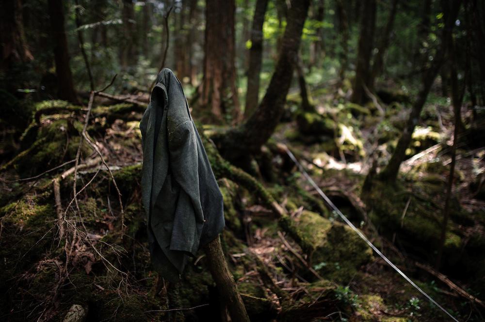 En Aokigahara se suicidan cada año entre 50 y 100 personas