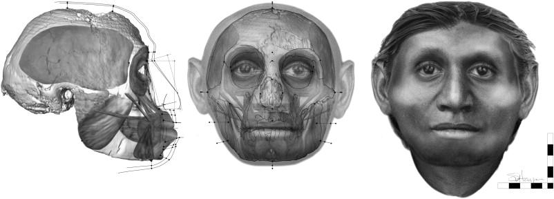 Reconstrucción de la cara de un floresiensis.