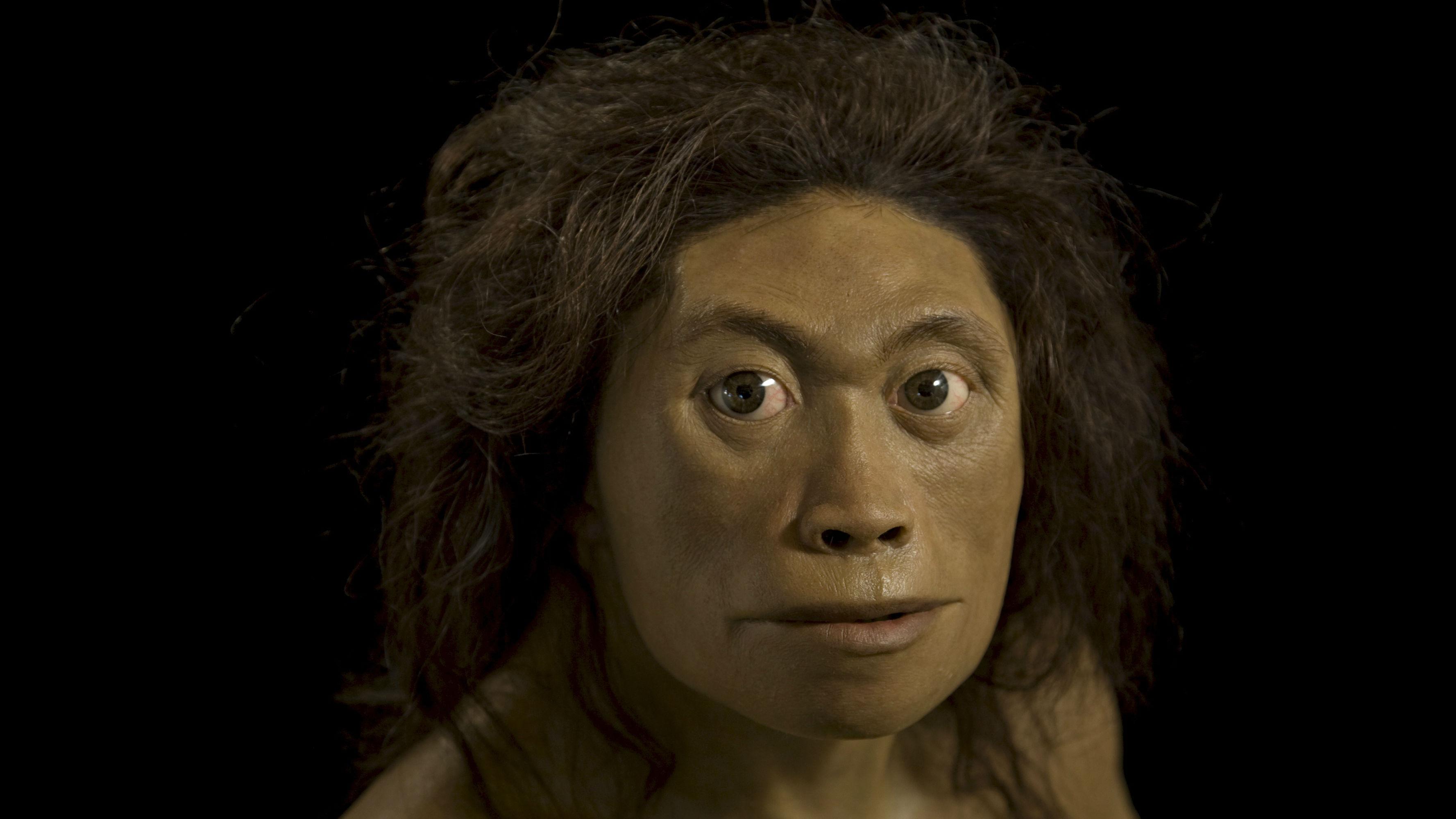 Otros detalles muy importantes y recientemente encontrados indican que el floresiensis tenía una muñeca más parecida a los chimpancés que no les permitía una habilidad tan diestra con los pulgares.