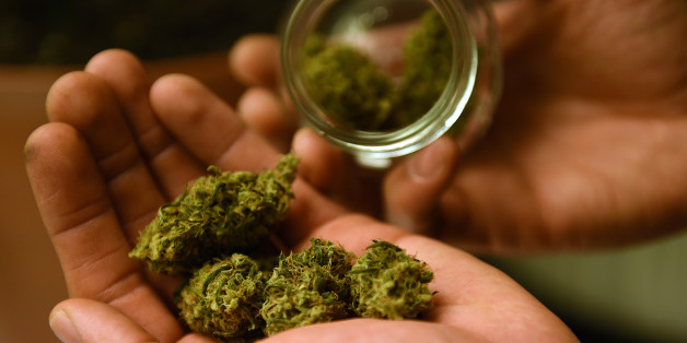 Según la ONU, existen 19.1 millones de consumidores de cannabis en el mundo.