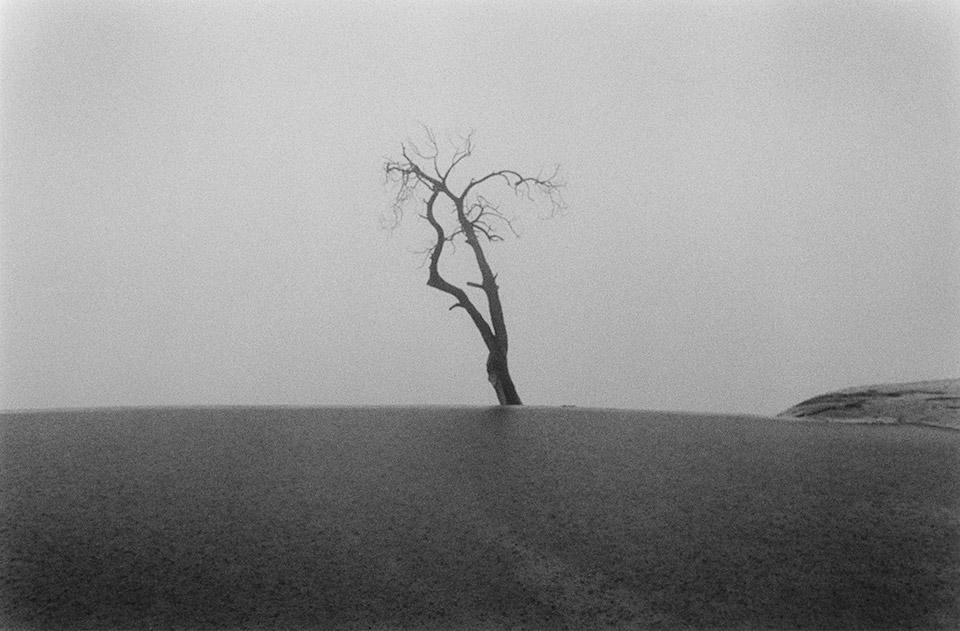 fotografas argentinas Adriana Lestido