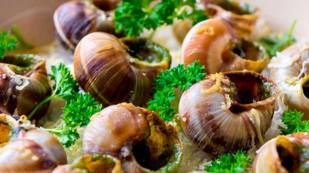caracoles de Borgoña, cocina francesa, Francia, gastronomía, caracoles, Imperio romano, gastronomía francesa, Marie Antoine Careme, Escargots bourguignonne, comida internacional