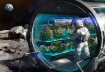 astronautas, marte, agricultores espaciales, tierra, Andy Wieir, NASA, científicos, planeta rojo, espacio, Jan Wörner, España, luna, 2020