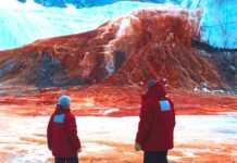 catarata sangrienta, catarata de sangre, Antártida, comunidad científica, valles secos de mcmurdo, antártico, hierro, Journal of Glaciology, ciencia, científicos