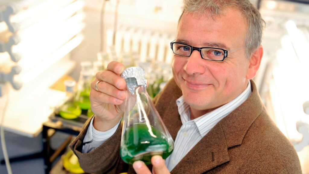 Científicos, Elizabeth Báthory, Energía, energía vital, estudios científicos, intercambio de energía, organismo, plantas, ser humano, seres vivos, trasnferior energía