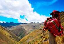 comunidades andinas, bosques de polylepis, polylepis, los andes, Perú, bosques, bosques de queñua, Sudamérica, sudamericanos, peruanos