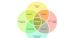 Ikigai, filosofía japonesa, filosofía, Japón, ciudadanos japoneses, cultura japonesa, isla de Okinawa, bienestar, salud mental, japoneses