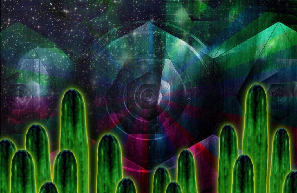 cactus san pedro, propiedades psicoactivas, mescalina, chamanes, cactus, Ecuador, Argentina, Perú, Bolivia, Trichocereus peruvianus, efectos psicodélicos, Trichocereus pachanoi, peruvianus