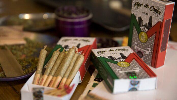 flor de caña, flor de caña la primera cajetilla mexicana de cigarros de marihuana, marihuana, flor de caña cajetilla de cigarros